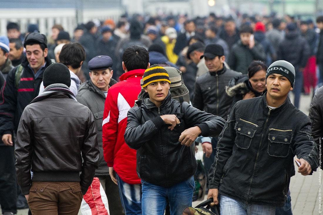 Россия начала наводить порядок в миграционной политике