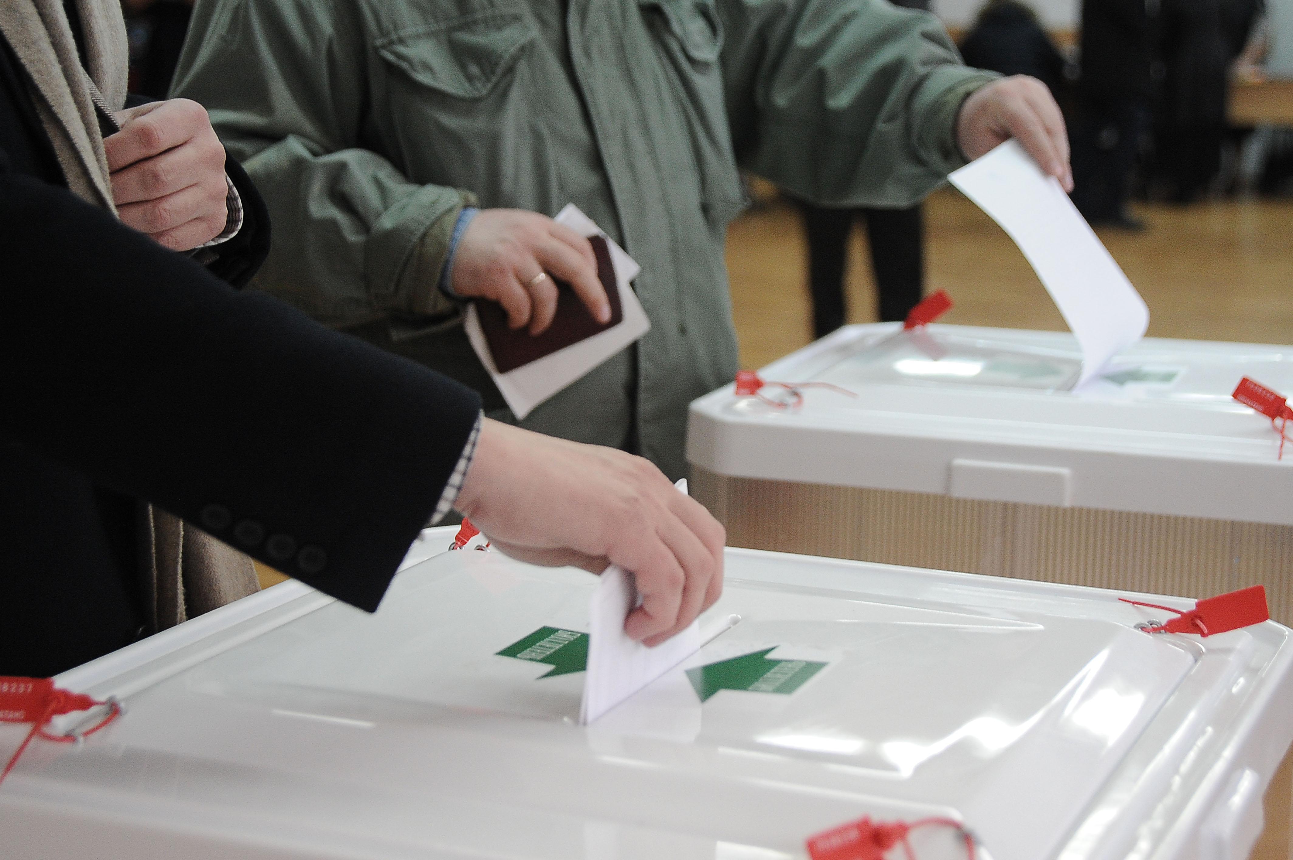Голосование и выборы картинки